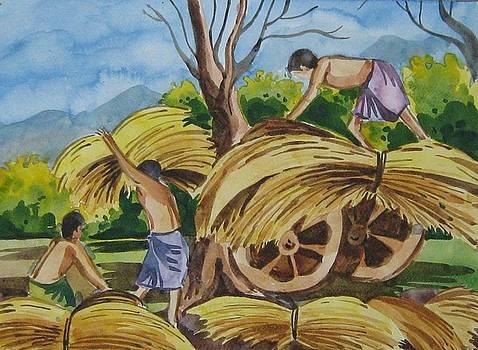 My Farm by Akhilkrishna Jayanth