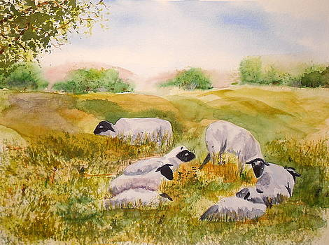 My Flock of Sheep by Vicki  Housel