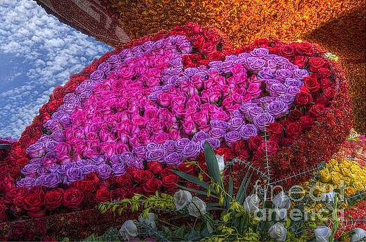 My Heart of Roses by Matthew Hesser