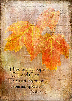 My Hope by Larry Bishop