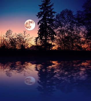 My Moon by Wendy Emel