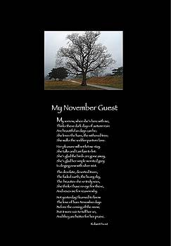 My November Guest by Robert Frost by Poetic Expressions