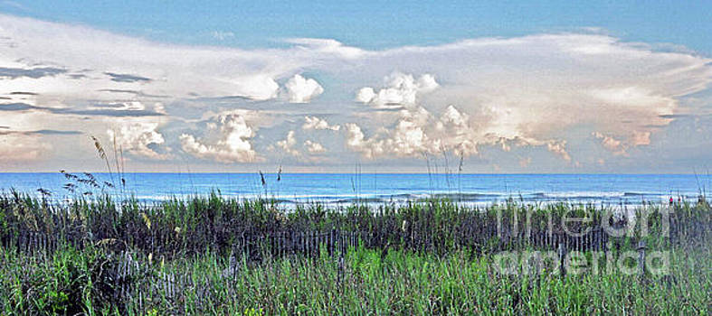 My Ocean View by Lydia Holly