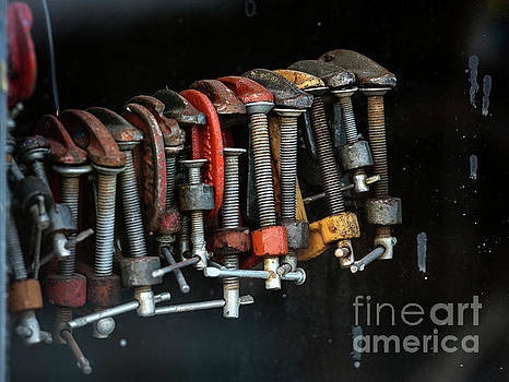 My Only Vise by John Greim