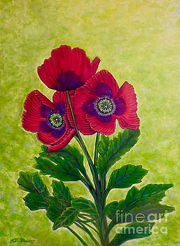 My Poppy Love by Kimberlee Baxter