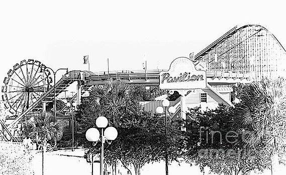 Myrtle Beach Pavillion Amusement Park Monotone by Bob Pardue