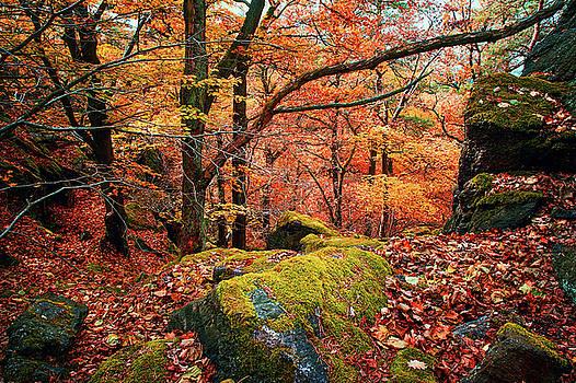 Jenny Rainbow - Mystery of Autumn