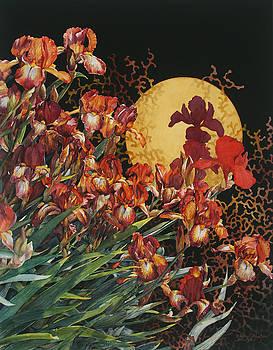 Mystic Iris by Cheryl Wooten