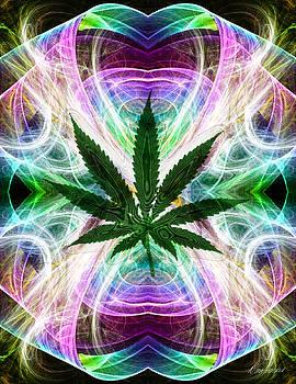 Diana Haronis - Mystic Leaf