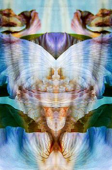 Mystic Spring  by Pamela Patch