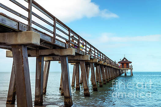 Naples Pier by David Lane