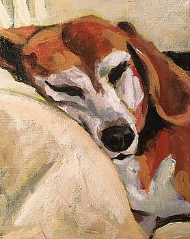 Napping Charley by Susan E Jones