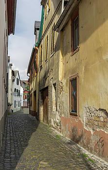 Narrow Alley in Rudesheim by Teresa Mucha