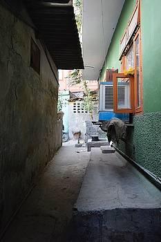 Sumit Mehndiratta - Narrow Corridor