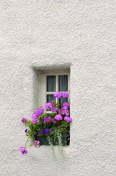 Jenny Rainbow - Narrow Window with Purple Geranium