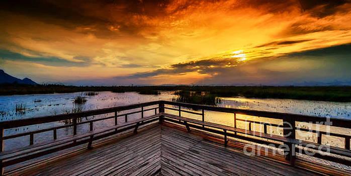Adrian Evans - National Park Sunset