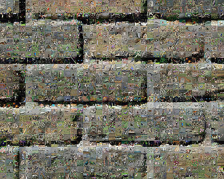 Nature and bricks by Gilberto Viciedo