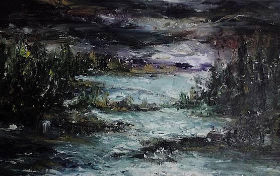 Nature in Night by Rushan Ruzaick