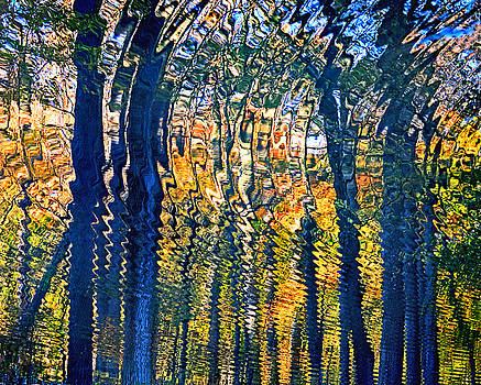 Nature Water Ripples Reflection on Water by Donna Haggerty