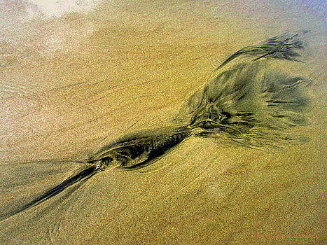 Joyce Dickens - Natures abstracts In The Sand Three