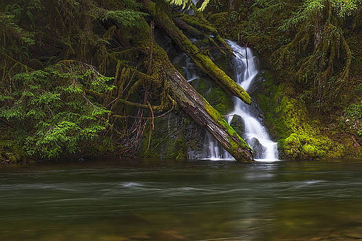 Nature's Flowing Waters by Dee Browning