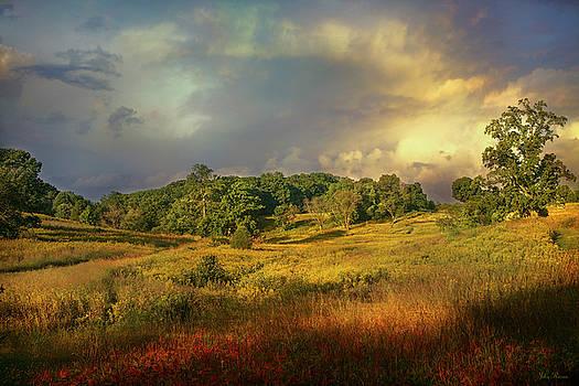 Natures Landscape by John Rivera