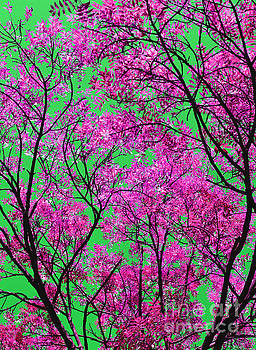 Natures Magic - Pink and Green by Rebecca Harman