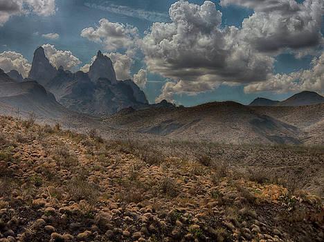 Natures Majesty by Judy Hall-Folde