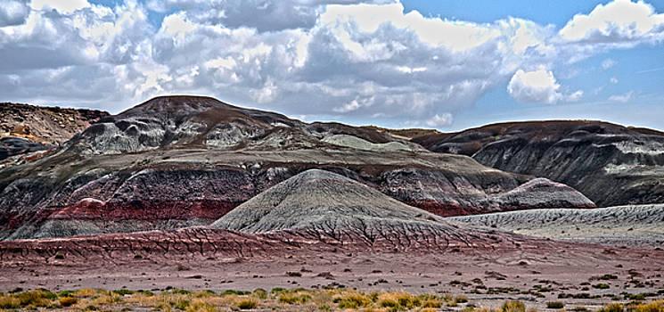 Judy Hall-Folde - Natures Pallet Panorama