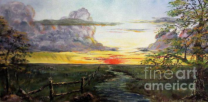 Nebraska Sunset by Lee Piper