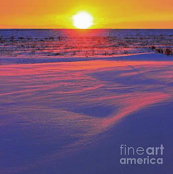 Neon dawn by Wesley Hahn
