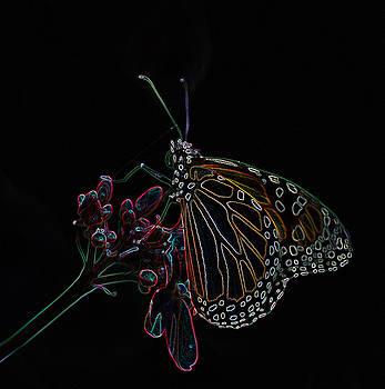 Neon Monarch Butterfly by D Keller