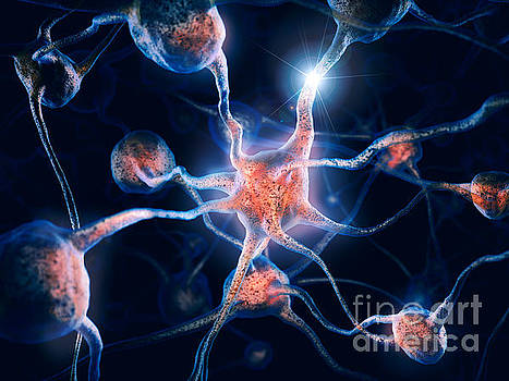 Neurons and neural connections Brain cells 3D illustration by Oleksiy Maksymenko