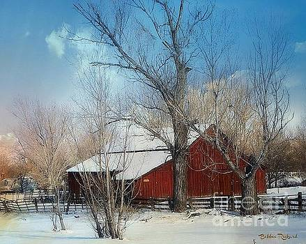 Nevada Barn in the Winter in Color by Bobbee Rickard