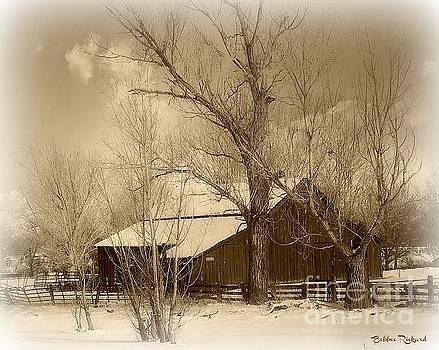 Nevada Barn in the Winter Sepia Tones by Bobbee Rickard