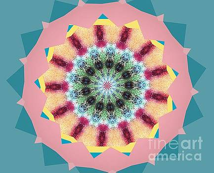 New Color Wheel by Shirley Moravec