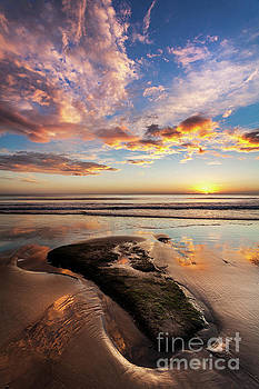 New Dawn by Martin Williams