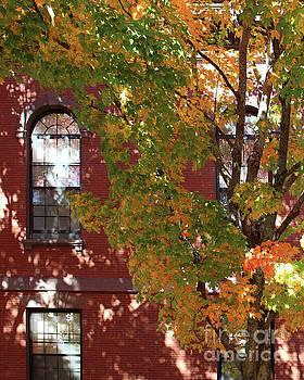 New England Fall by Cheryl Del Toro