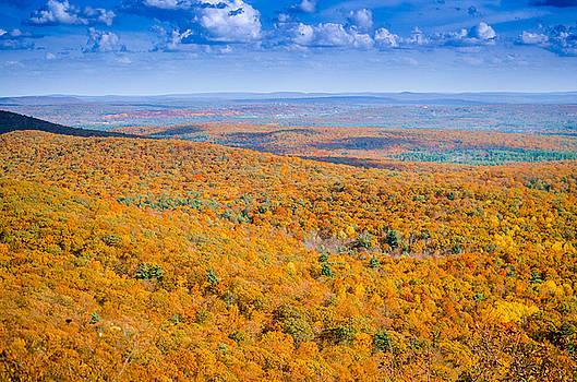 New England Fall by Riddhish Chakraborty