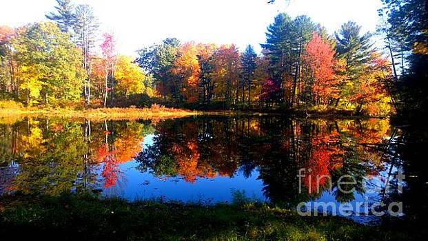 New England in Autumn by Eunice Miller