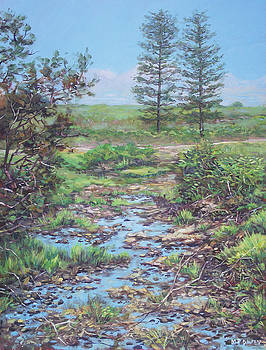 New Forest Ditch by Martin Davey