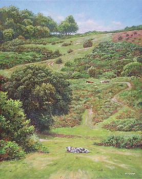 New Forest Hill with cows and horses by Martin Davey