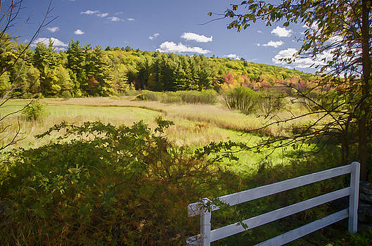 New Hampshire Countryside by Lee Fortier
