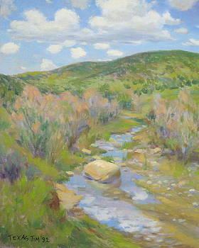 New Mexico Hills by Texas Tim Webb