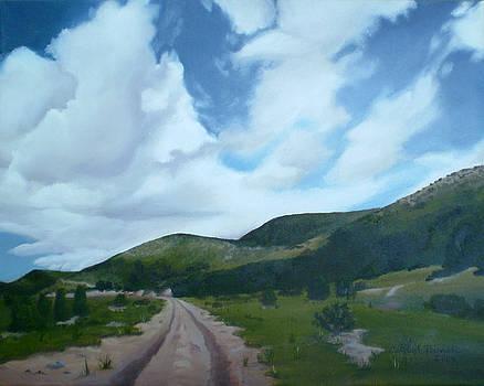 New Mexico Sky by Candace Barnett