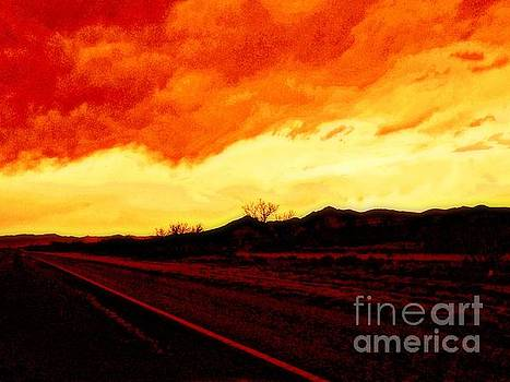 Sunset In New Mexico Southwest Fire In The Sky by Michael Hoard