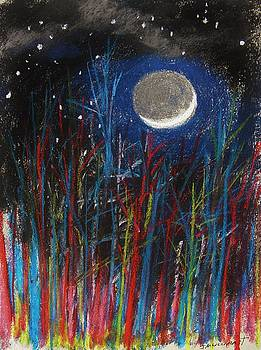 New Moon Through Red and Blue by John Williams