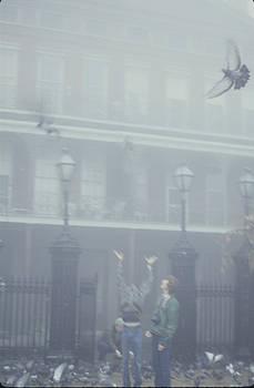 New Orleans - Original Photo by Tom Romeo