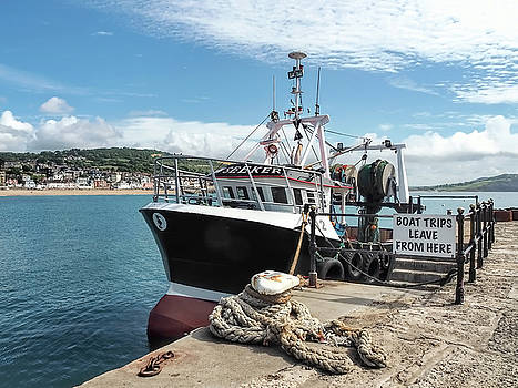 New Seeker - Lyme Regis Harbour by Susie Peek