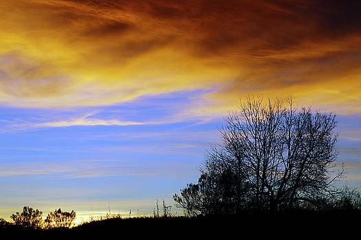 New Year's Sunset by Bill Morgenstern